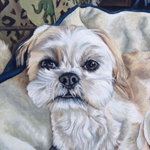 shih tzu oil painting by Heather Hughes