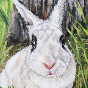 bunny rabbit oil painting