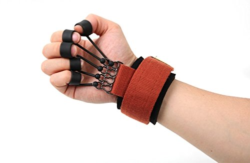 MANUS Physical Therapy Hand Exercisers
