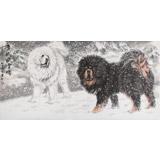 【已售】王贵邱四尺国画藏獒《雪域风雪情》