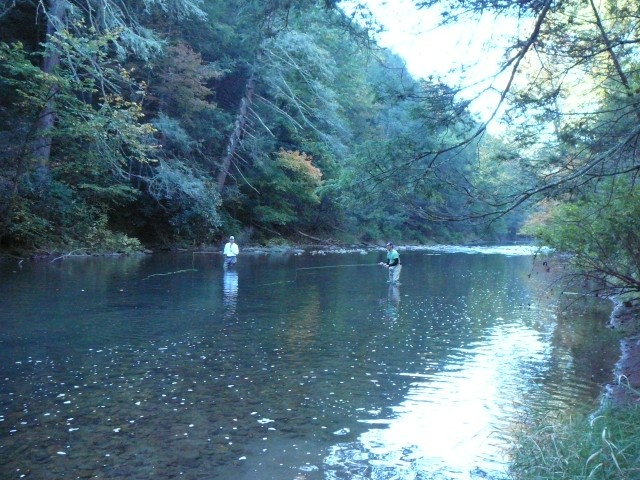 Fly Fishing for Virginia Smallmouth Bass, Shenandoah Valley. Call 540.294.0354 for Guiding or Instruction. Wild Mountain Trout Fly Fishing and Virginia Smallmouth Bass