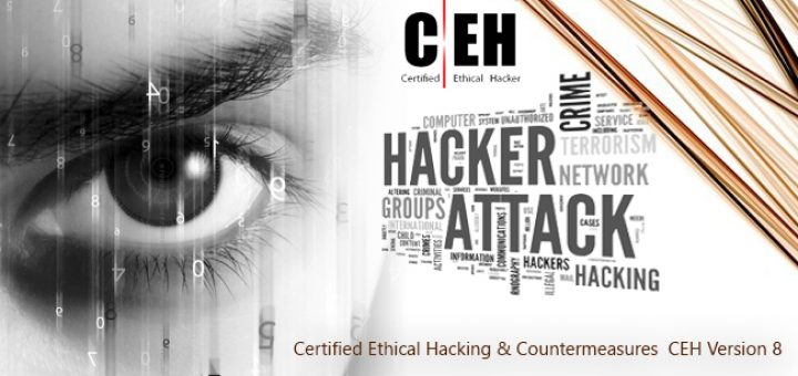 Certified Ethical Hacker v8 FULL Course PDF