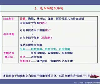 贺银成西医综合-内科学