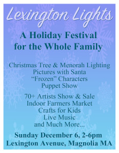 Lexington Lights 2015 Flyer