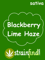 Blackberry Lime Haze