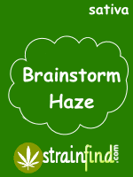 Brainstorm Haze