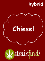 Chiesel