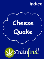 Cheese Quake