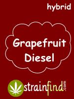 HYBRIDgrapefruitdiesel