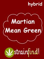 HYBRIDmartianmeangreen
