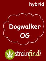 HYBRIDdogwalkerOG