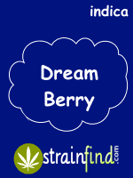 Dream Berry