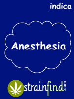 INDICAanesthesia