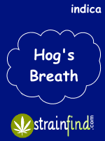 Hog's Breath