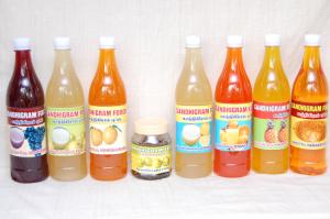 Gandhigram Juices