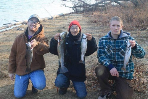 (left to right) Zach Batren, myself, and Chris Moran with a nice haul of Trout caught fishing the Round Valley shoreline on both Powerbait, and live Shiners!