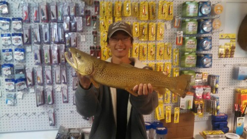 Big Brown Trout, Zach Merchant