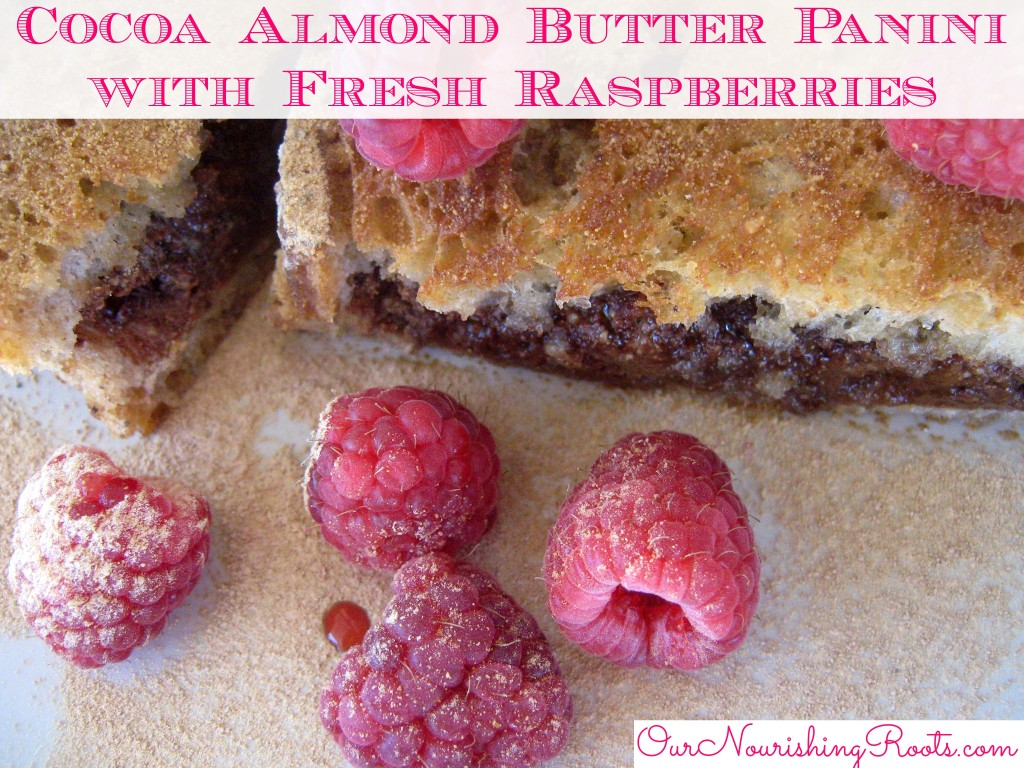 Cocoa Almond Butter Panini with Fresh Raspberries | OUR NOURISHING ROOTS