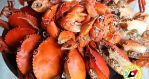 10 ที่พักไปกินปูนอนโฮมสเตย์ที่จันทบุรี.
