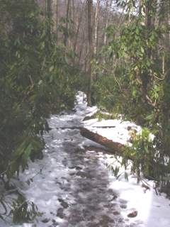 Winter Hiking on Snowy Trails