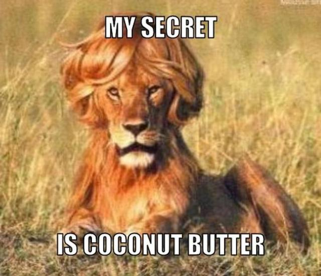 resized_coconut-butter-meme-generator-my-secret-is-coconut-butter-32adc4