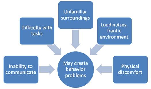 Causes of Problem Behavior