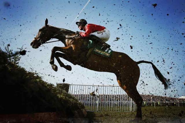 Innerplace Recommended Venue Crabbies Grand National