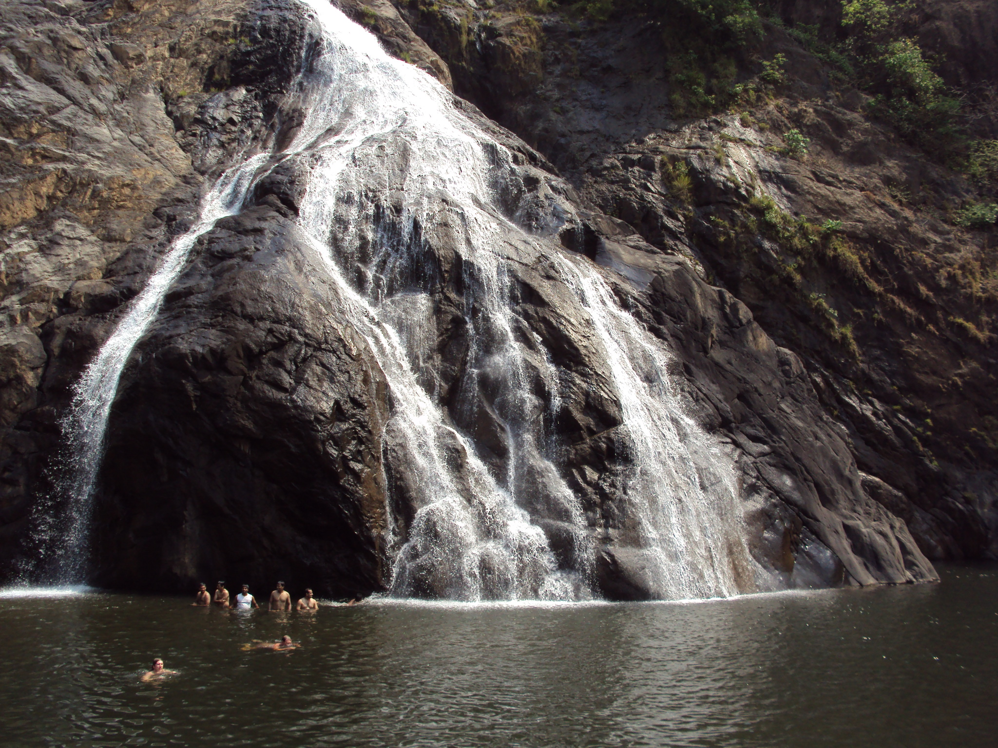 Dudhsagar,_the_milky_waterfall,_Goa