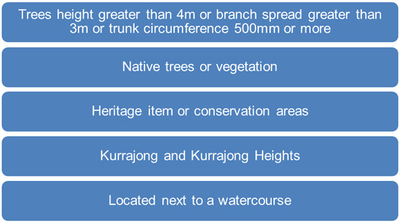 5 categories of trees