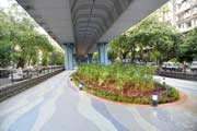 Mumbai's first garden under a flyover opened for public in Matunga