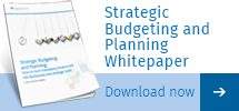 Strategic Budgeting and Planning Whitepaper