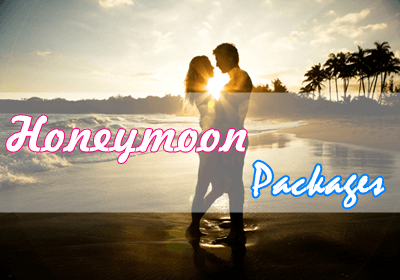 Honeymoon Tour Packages
