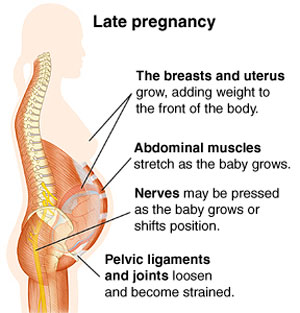 Back Pains During Pregnancy