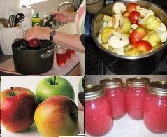 Making Apple Jelly