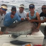 Iced Down 118# grouper