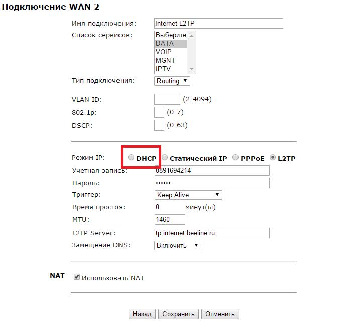 Custom DHCP Beeline