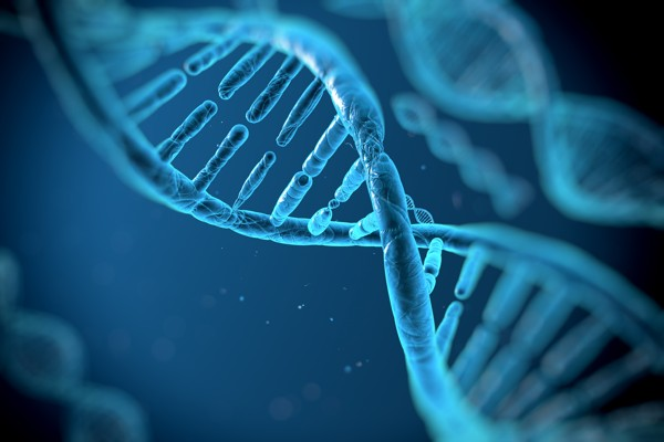 discover-history-dna