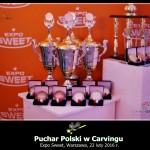 Puchary i medale w rywalizacji drużynowej