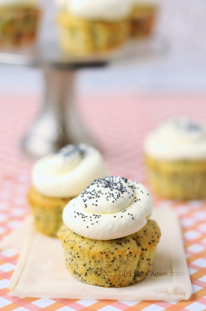 poppy seed cupcakes