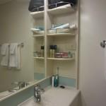 The bathroom actually had shelves!