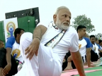 International Yoga Day: PM Modi and ministers perform yoga