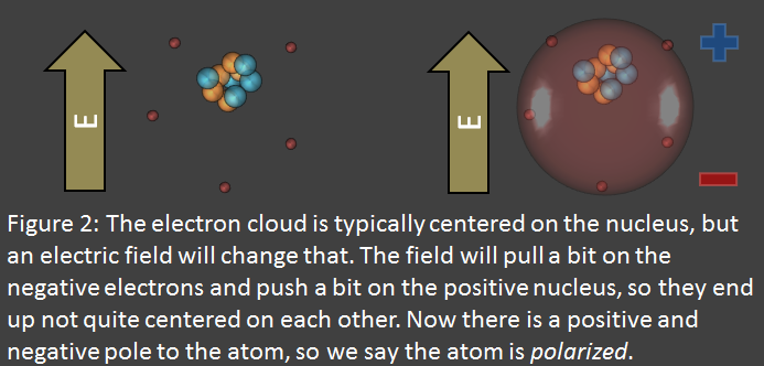 Electric fields polarize atoms