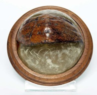 MO63.4852 Coconut shell paperweight with PT109 rescue message