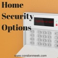 Home Security Options