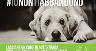 #ionontiabbandono è la campagna promossa da Lega del Cane e autostrade