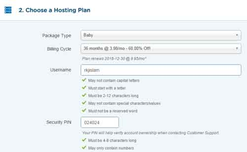 choosing hosting plan