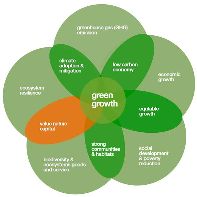 green growth, eco fashion dictionary updates, Illustrations Kenneth buddha Jeans