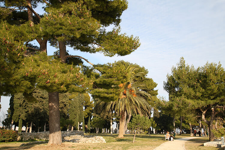 Split | Best Places To Do Yoga on Holiday In Dalmatia