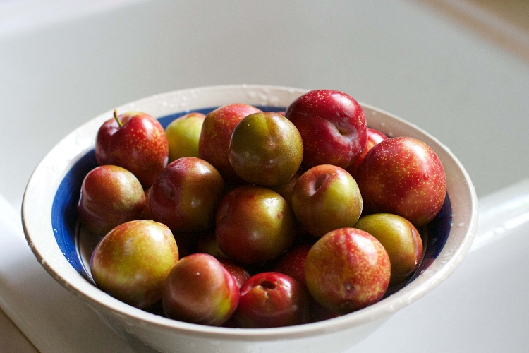 plums | Total Croatia