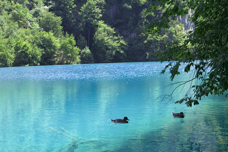 Plitvice Lakes | Total Croatia